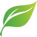 Shadowtek Web Solutions